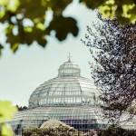Sefton Palm House wins green tourism award