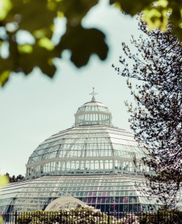 Sefton Palm House wins green tourism award