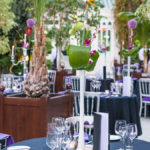 Sefton Palm House fundraising dinner