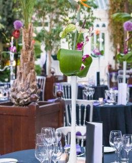 Sefton Palm House fundraising dinner