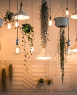 illuminate your home