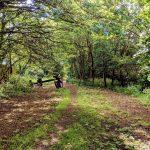 wellbeing mini retreat