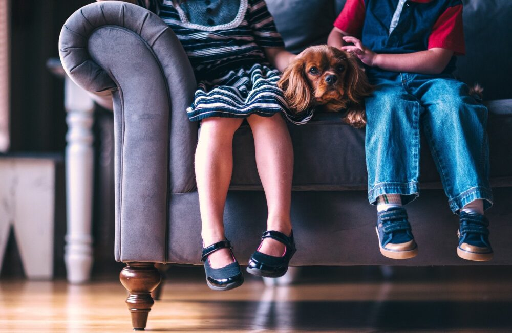children sitting on a sofa with a dog
