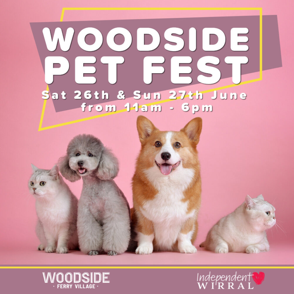 Pet Fest image